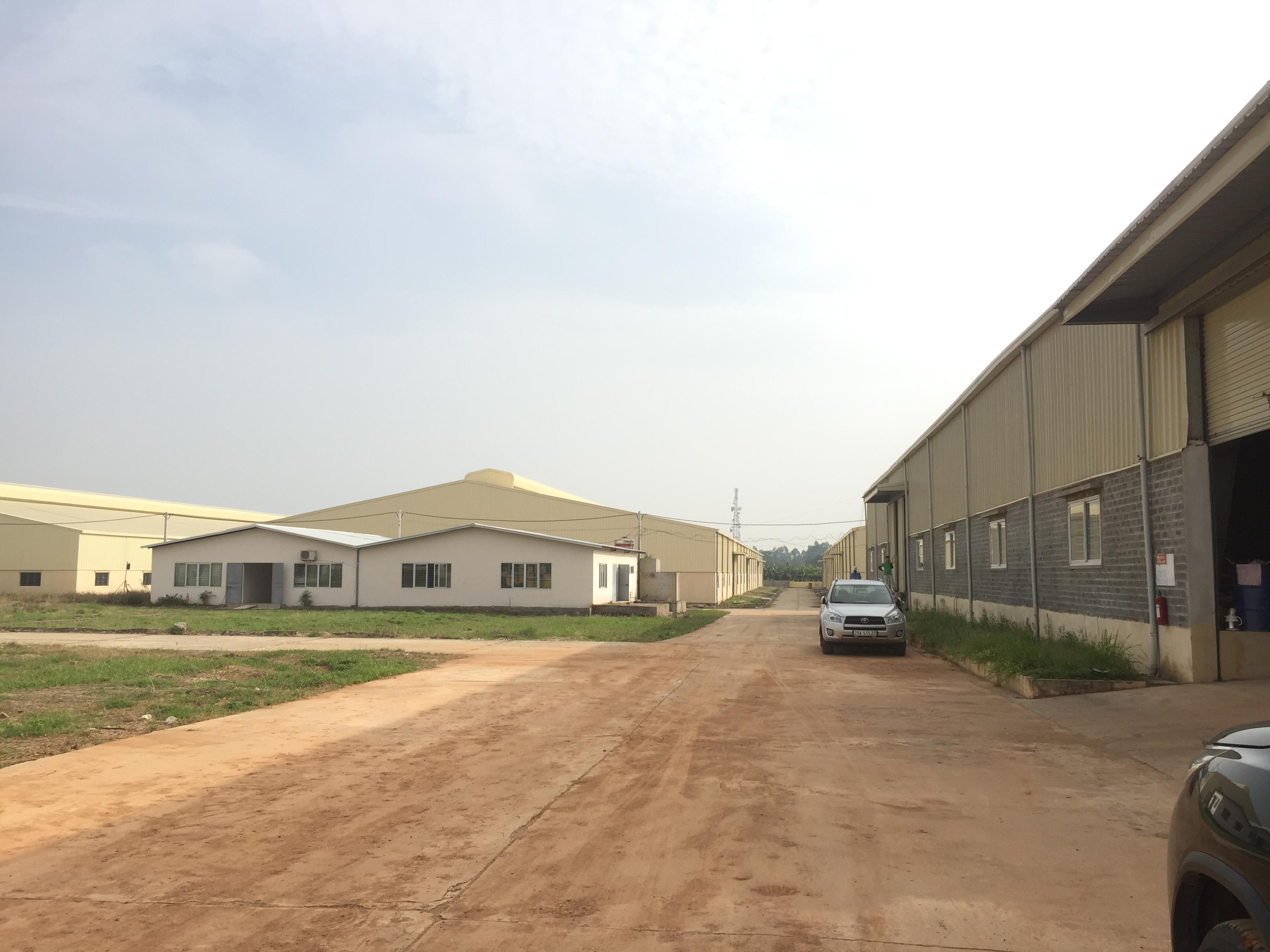 Cho thuê nhà xưởng khu công nghiệp Bạch Hạc Phú Thọ